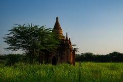 Bagan dziejowa pagoda obrazy stock