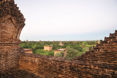 Bagan landscape. Royalty Free Stock Image