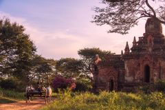Bagan, Myanmar Fotografia de Stock Royalty Free