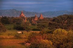 Bagan, Myanmar Imagem de Stock