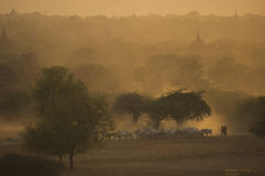 Bagan - Myanmar Lizenzfreie Stockfotografie