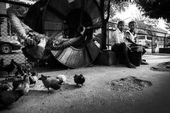 Bagan Myanmar - OKTOBER 20: Barn gör pengar som säljer fågeln fo Arkivbilder
