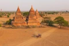 Bagan Myanmar, pagod Arkivfoton
