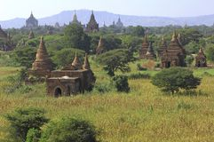 bagan myanmar panorama Royaltyfria Bilder