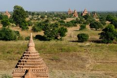 Bagan, Myanmar-Tempel in der archäologischen Zone birma Lizenzfreie Stockbilder