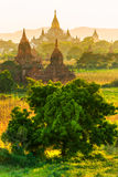 Bagan, Myanmar. Stock Images