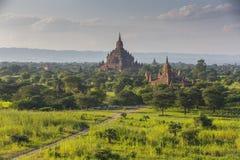 Bagan pagod i Myanmar Arkivfoton