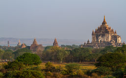 Bagan Pagoden Lizenzfreies Stockfoto