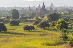Bagan tempel, Myanmar Royaltyfri Bild