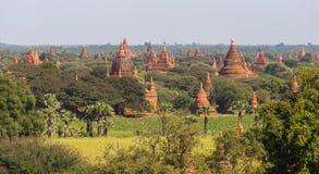 Bagan tempel, Myanmar Arkivbild