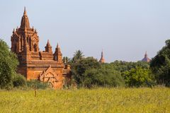 Bagan tempel, Myanmar Arkivfoton