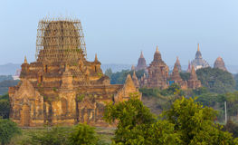 Bagan temple during golden hour Stock Photography