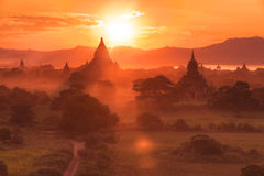 Bagan temples at sunset. Sunset panorama of many Bagan temples and rice fields, Burma Royalty Free Stock Photo