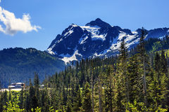 Bagare Ski Area Washington för montering för monteringsShuksan evergreen fotografering för bildbyråer