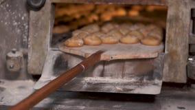 Bagaren som ut tar med skyffeln bakade nytt, br?d fr?n ugnen lager videofilmer