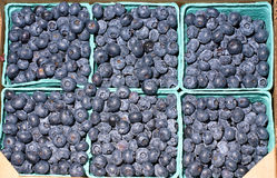 Bagas azuis naturais em uns recipientes Imagem de Stock