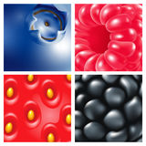 bagas Close-up Framboesas, mirtilos, amoras-pretas, morangos Fundo da baga Imagens de Stock Royalty Free