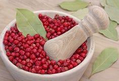 Bagas cor-de-rosa secadas da pimenta Fotografia de Stock