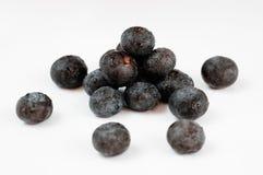 Bagas da fruta de Acai Imagens de Stock Royalty Free