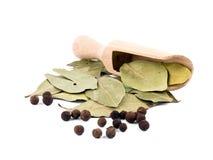 Bagas da pimenta da Jamaica com pá e louro de madeira Fotos de Stock