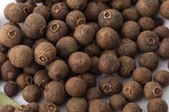 Bagas da pimenta da Jamaica | especiarias Imagem de Stock
