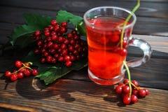 Bagas de um viburnum em uma superfície de madeira Bebida do viburnum imagem de stock royalty free