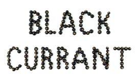 Bagas do corinto preto no fundo branco Fonte do fruto, letras Fotos de Stock