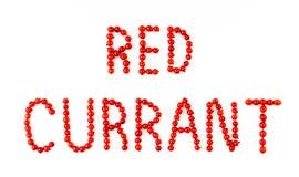 Bagas do corinto vermelho no fundo branco Fonte do fruto, letras Imagens de Stock