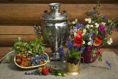 Bagas e flores Fotografia de Stock Royalty Free