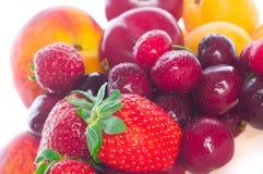 Bagas e fruta frescas imagens de stock royalty free