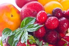 Bagas e fruta frescas fotografia de stock