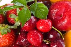 Bagas e fruta frescas imagem de stock