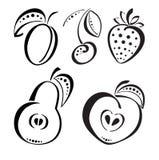 Bagas e frutas Fotografia de Stock