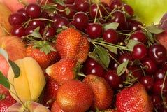 Bagas e frutas frescas Foto de Stock Royalty Free