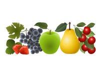 Bagas e frutos brilhantes Imagens de Stock Royalty Free