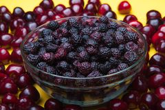 Bagas e frutos da mistura Colheita do verão imagem de stock