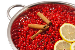Bagas e ingredientes da passa de Corinto vermelha para fazer o atolamento Fotografia de Stock Royalty Free
