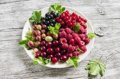 Bagas - framboesas, groselhas, corintos vermelhos, cerejas, corintos pretos em uma placa branca Foto de Stock Royalty Free