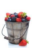 Bagas frescas no balde Imagem de Stock Royalty Free
