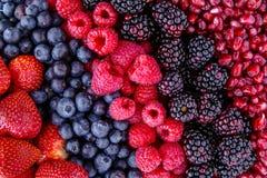 Bagas frescas sortidos e sementes da romã Foto de Stock Royalty Free