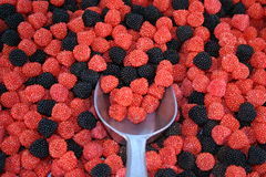 Bagas gomosas da fruta Fotografia de Stock