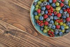 Bagas maduras do verão Imagem de Stock