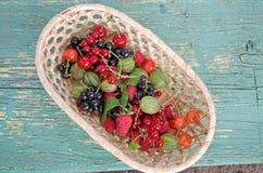 bagas Os presentes do verão em uma cesta foto de stock