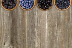 Bagas pretas e azuis Amoras-pretas, mirtilos, corintos e mirtilos imagem de stock