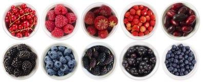 bagas Preto-azuis e vermelhas isoladas no fundo branco Colagem de frutos e de bagas diferentes Mirtilo, amora-preta, amoreira, Foto de Stock Royalty Free