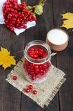 Bagas suculentas vermelhas de um viburnum com açúcar em um frasco de vidro em um fundo de madeira escuro Imagem de Stock Royalty Free
