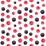 Bagas teste padr?o sem emenda do corinto vermelho e preto, ilustra??o tirada m?o da aquarela ilustração stock