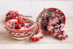 Bagas vermelhas cobertas com a neve no copo modelado brilhante Imagem de Stock Royalty Free