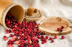 Bagas vermelhas dispersadas em um fundo claro Imagem de Stock