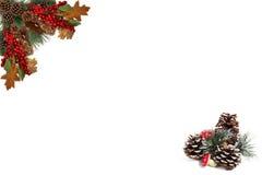 Bagas vermelhas dos cones do pinho da etiqueta do fundo do Natal e embarcado pela festão festiva foto de stock royalty free